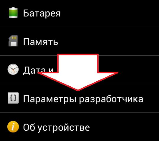 открываем раздел Параметры разработчика