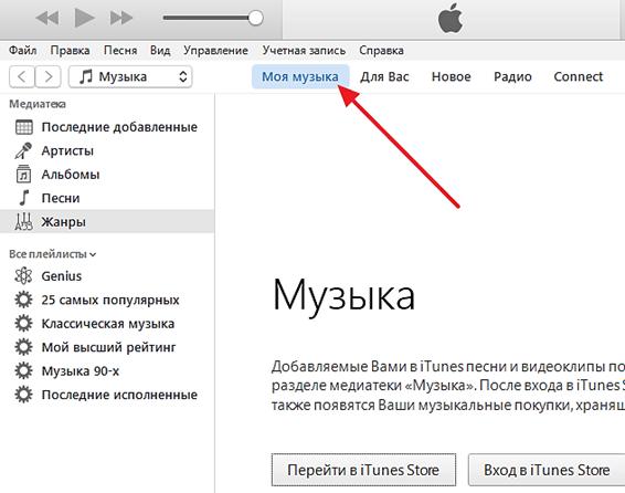 раздел Моя музыка в iTunes