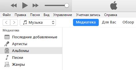 окно программы iTunes